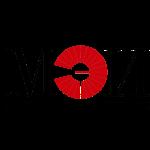 СПРУТ-АЭД-Расчеты Лого МЭИ 2